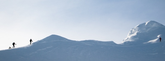 On the Birkenhead Summit Ridge - Michal Rozworski photo.
