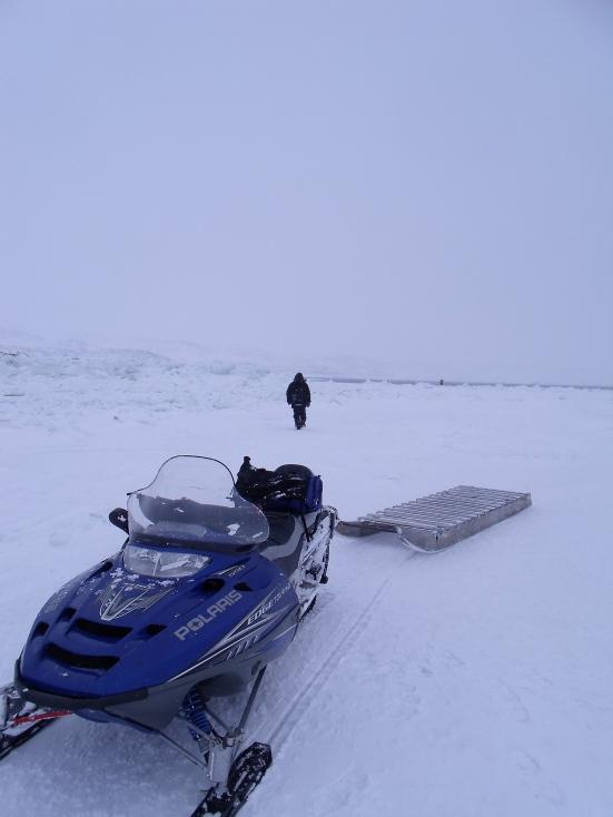Saqvaq, Frobisher Bay (February 2014 - Kitching)