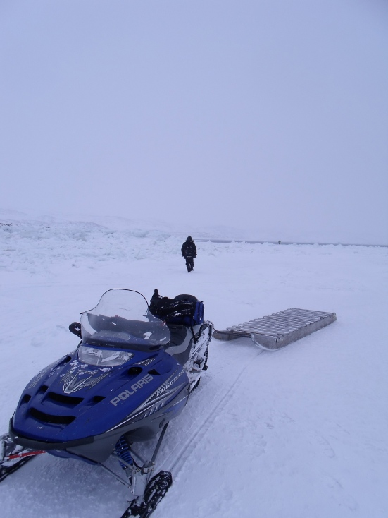 Saqvaq, Frobisher Bay (February 2014 - Kitching)