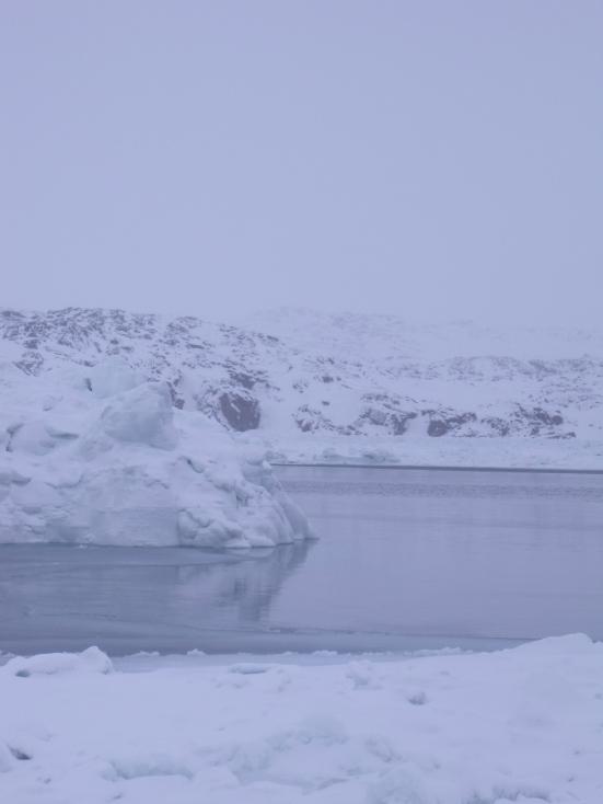 Saqvaq during Blizzard, Frobisher Bay (February 2014 - Kitching)