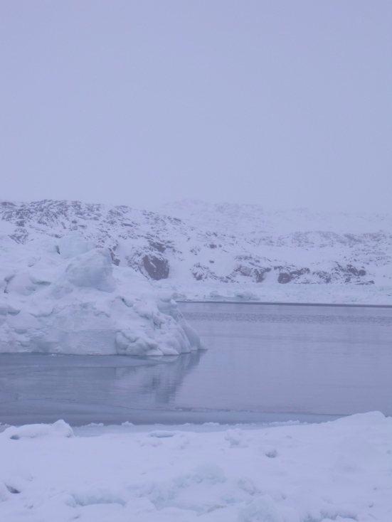 Saqvaq during Blizzard, Frobisher Bay (February 2014 - Kitching)
