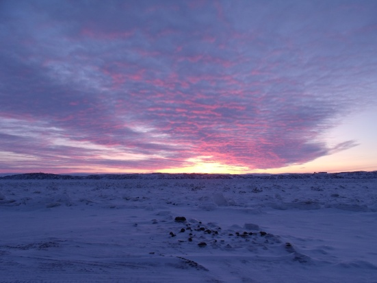 Sunset over broken ice, Iqaluit (January 2014 - Kitching)