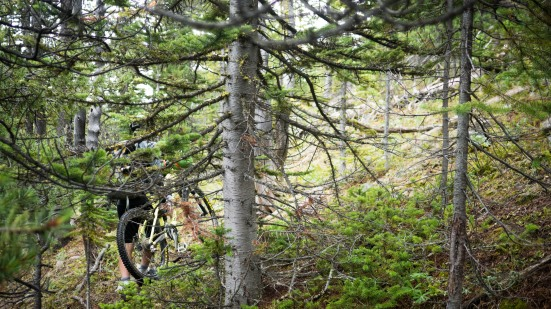 Though steep and strenuous, the bushwhacking in these parts proved entirely feasible.