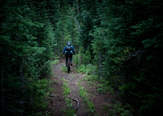 In the fading light, we turned onto a quad trail, which eventually stepped down to a moto-sculpted singletrack, and another steep, rowdy singletrack descent by headlamp. We arrived at the cars around 10:30pm.