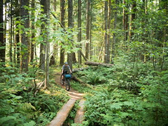 It rolls between quad trail, dirt road, and easy forested singletrack. Beautiful, in places, despite the logging and littering recreators.