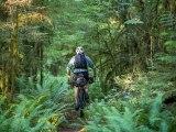 Ride. Camp. Repeat. – a bikepackingvideo